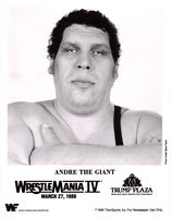 Andre The Giant picture G341710