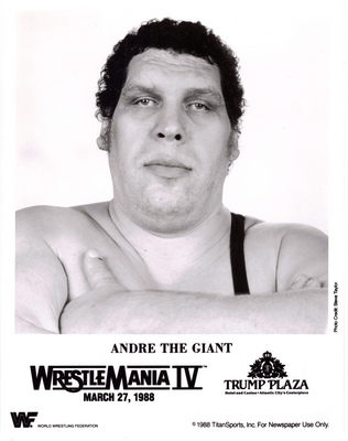 Andre The Giant poster G341707