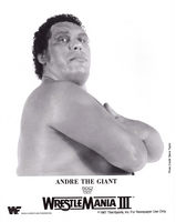 Andre The Giant picture G341707