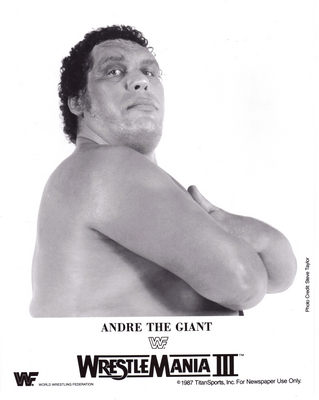 Andre The Giant poster G341708