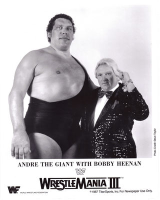 Andre The Giant poster G341709