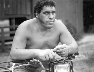 Andre The Giant poster G341710