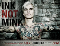 Steve Forrest picture G342485