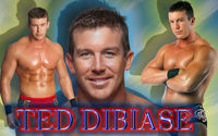 Ted Dibiase picture G342794