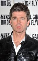 Noel Gallagher picture G342963