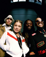 Black Eyed Peas picture G390430
