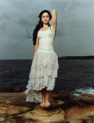 Amy Lee poster G408979