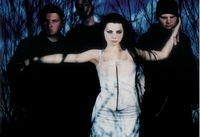 Amy Lee picture G409003