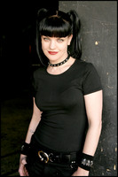 Pauley Perrette picture G427928