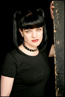 Pauley Perrette picture G427943