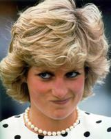 Princess Diana picture G429364