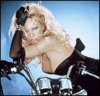 Pamela Anderson picture G431740
