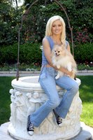 Holly Madison picture G337966