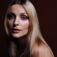 Sharon Tate picture G443453