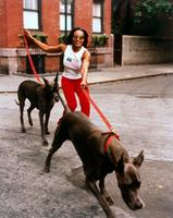 Nona Gaye picture G451629