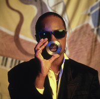 Stevie Wonder picture G462014