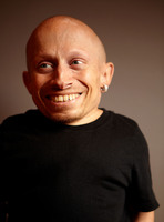 Verne Troyer picture G495278