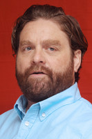 Zack Galifianakis picture G497611