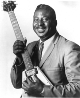 Albert King picture G520732