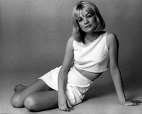 Judy Geeson picture G521098