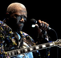 B.B. King picture G521306