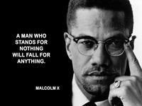 Malcolm X picture G521631