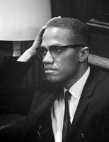 Malcolm X picture G521634