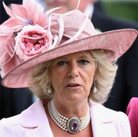 Camilla Parker Bowles picture G521683