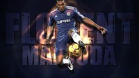 Florent Malouda picture G522355