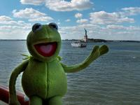 the Frog Kermit picture G531111