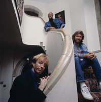The Bee Gees picture G531635