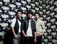 the Jonas Brothers picture G531962