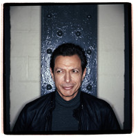 Jeff Goldblum picture G533853