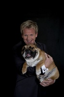 Gordon Ramsay picture G536370