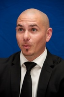 Pitbull picture G558929