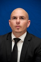 Pitbull picture G558931
