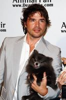 Matthew Settle picture G563627