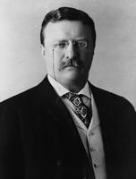 Theodore Roosevelt picture G563770