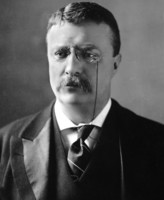 Theodore Roosevelt picture G563771