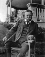 Theodore Roosevelt picture G563772