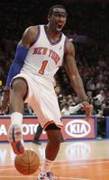 Amare Stoudemire picture G563894