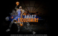 Amare Stoudemire picture G563898