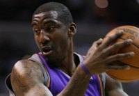 Amare Stoudemire picture G563901