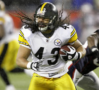 Troy Polamalu picture G563962