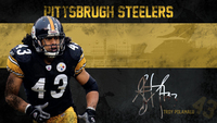 Troy Polamalu picture G563963