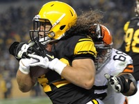 Troy Polamalu picture G563965