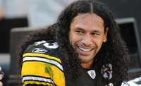 Troy Polamalu picture G563968