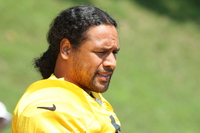 Troy Polamalu picture G563969