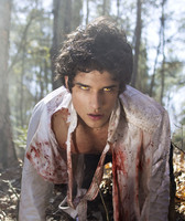 Tyler Posey picture G564183