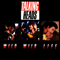 Talking Heads picture G634476